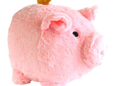 spaarvarken knuffel roze